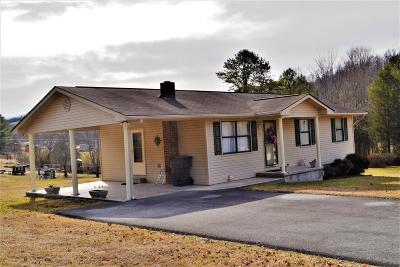 New Tazewell Single Family Home For Sale: 172 Peanut Lane