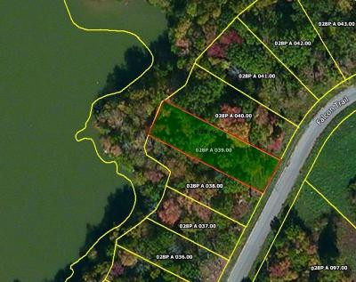 Residential Lots & Land For Sale: Lot 39 Falcon Tr