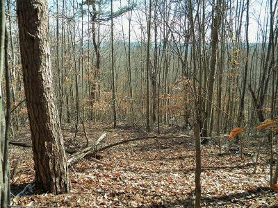 New Tazewell Residential Lots & Land For Sale: Lot 167 Chimney Rock Rd