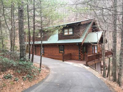 Sevierville Single Family Home For Sale: 3044 Brothers Way