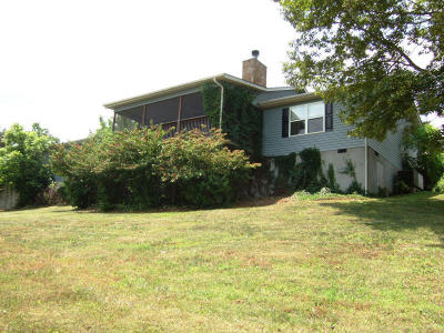 Tazewell Single Family Home For Sale: 364 Holiday Lane