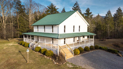Tellico Plains Single Family Home For Sale: 257 McJunkin Rd