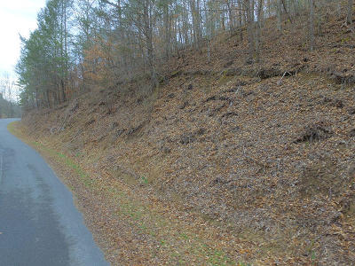 Sevier County Residential Lots & Land For Sale: Lot 17 Bear Mountain Lane/Way