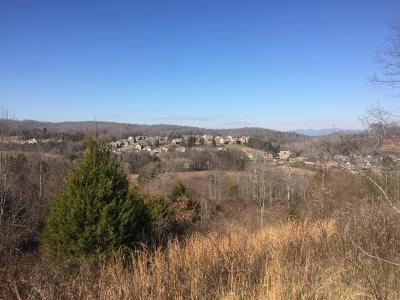 Knoxville Residential Lots & Land For Sale: 12136 Hardin Valley Rd