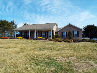 Sevierville Single Family Home For Sale: 2813 Luther Catlett Circle