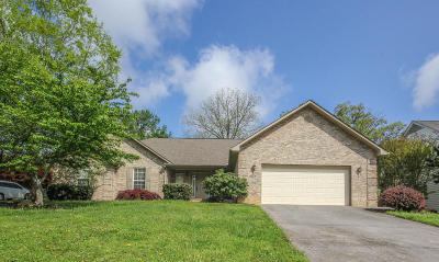 Maryville Single Family Home For Sale: 2137 Chas Way Blvd