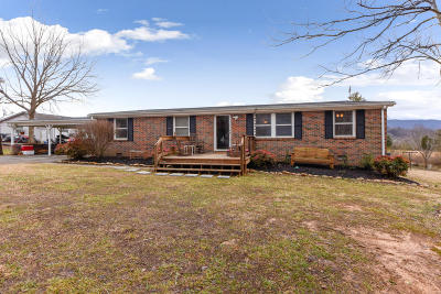Maryville Single Family Home For Sale: 3111 Wilkinson Pike