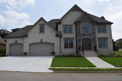 Knoxville Single Family Home For Sale: Cabot Ridge Lane
