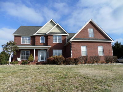 Sevierville Single Family Home For Sale: 1530 Tomahawk View Drive