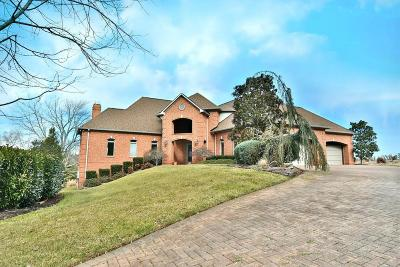 Knoxville Single Family Home For Sale: 9201 Double Eagle Lane