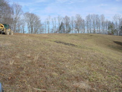 Lafollette Residential Lots & Land For Sale: White Lane