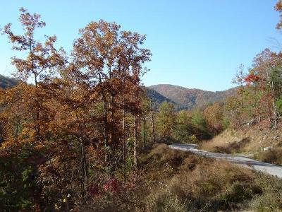 Blount County Residential Lots & Land For Sale: 138 Anatole Pass