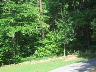 Residential Lots & Land For Sale: Walker Hollow Drive #2
