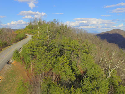 Blount County Residential Lots & Land For Sale: Lot 48w Long Rifle Rd
