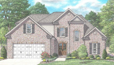 Knoxville Single Family Home For Sale: 2311 Laurel Branch Lane