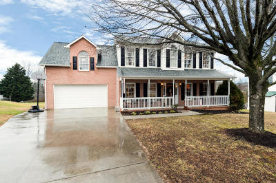 Powell Single Family Home For Sale: 456 Country Run Circle