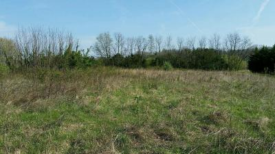 Sevierville Residential Lots & Land For Sale: Lot 54 Lazy River Lane