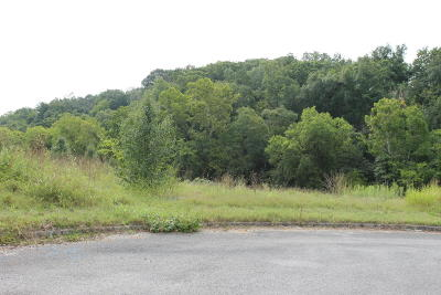 Sevierville Residential Lots & Land For Sale: Lot 17 River Vista Circle