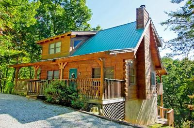 Sevierville Single Family Home For Sale: 1610 Overlook Court