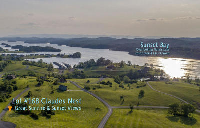 Union County Residential Lots & Land For Sale: Lot 168 Claudes Nest