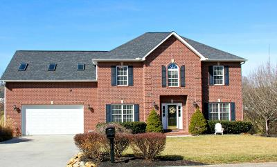 Knoxville Single Family Home For Sale: 425 Sundown Rd