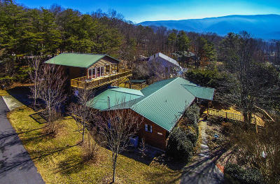 Sevierville Single Family Home For Sale: 3588 Four Seasons Lane