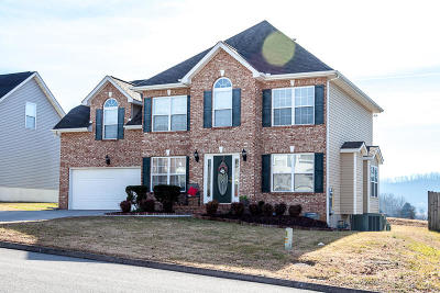 Knoxville Single Family Home For Sale: 2810 Summertime Lane