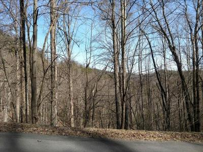 Sevierville Residential Lots & Land For Sale: Lot 11 Whetstone Rd