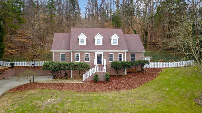 Knoxville Single Family Home For Sale: 11320 Berry Hill Drive