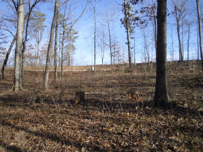 The Highlands Residential Lots & Land For Sale: Eagle Bluff Rd