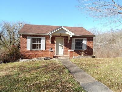 Knoxville Single Family Home For Sale: 831 W Ford Valley Rd
