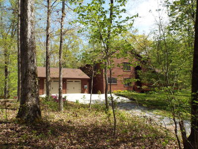 Friendsville Single Family Home For Sale: 1034 Wilderness Rd