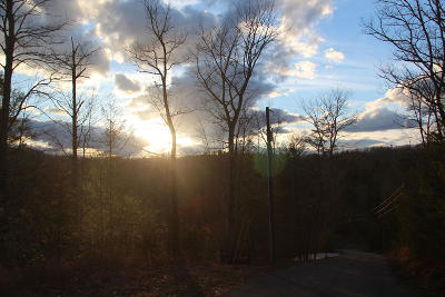 Sevier County Residential Lots & Land For Sale: Lot 8-R Woodcock Trail