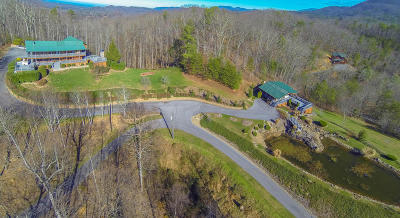 Sevierville Single Family Home For Sale: 3727 Harris Mountain Way