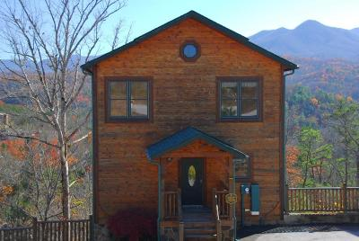 Gatlinburg Single Family Home For Sale: 902 Parkview Point Way