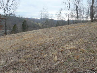 New Tazewell Residential Lots & Land For Sale: Lot 55 Cingular Drive
