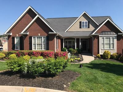Knoxville Single Family Home For Sale: 2649 Nicholas View Lane
