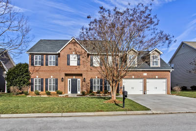 Knoxville Single Family Home For Sale: 12721 Distant View Lane