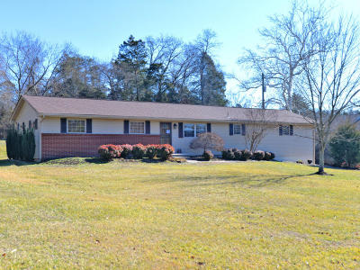 Knoxville Single Family Home For Sale: 600 Mars Hill Rd