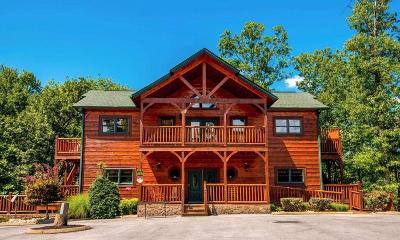 Gatlinburg Single Family Home For Sale: 319 Poplar Point Way