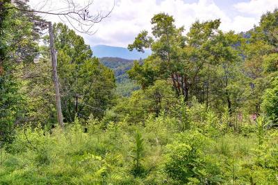 Gatlinburg Residential Lots & Land For Sale: 673 Alta Vista Drive