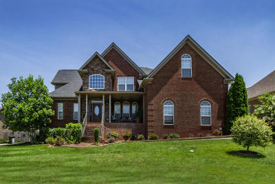 Knoxville Single Family Home For Sale: 1740 Apple Grove Lane