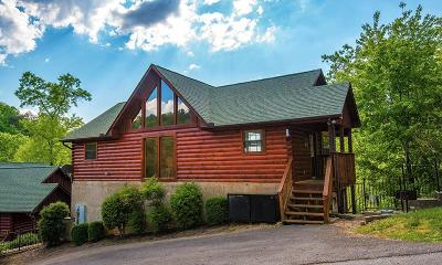 Sevierville Single Family Home For Sale: 1528 Boo Boo Way
