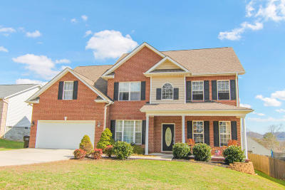 Knoxville Single Family Home For Sale: 3812 Boyd Walters Lane