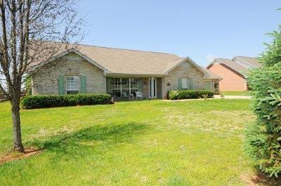 Greenback Single Family Home For Sale: 5529 W J Riley Rd