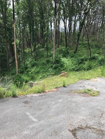 Gatlinburg Residential Lots & Land For Sale: 1230 Hemlock Drive