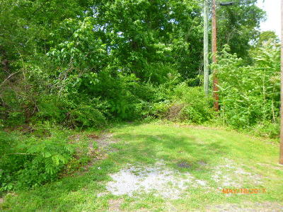 Knoxville Residential Lots & Land For Sale: 5305 Pinnacle Drive