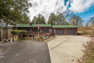 Sevierville Single Family Home For Sale: 2470 E Walnut Grove Rd