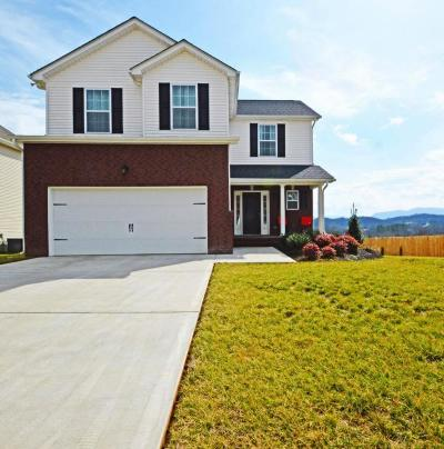 Sevierville Single Family Home For Sale: 2835 Southwinds Circle