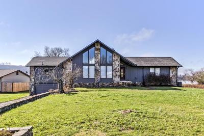 Meigs County, Rhea County, Roane County Single Family Home For Sale: 382 Edgelake Drive